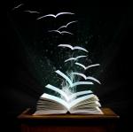 Magic Book Birds