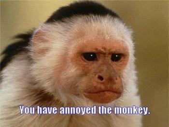 annoyed the monkey