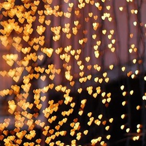 twinkling_heart_lights-9287