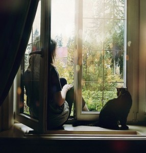 women,girls,cat,companions,freedom,window-3413a9b74b3e6e7ab315a4d9ee3e0aae_h